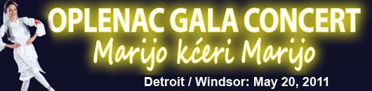 Windsor concert